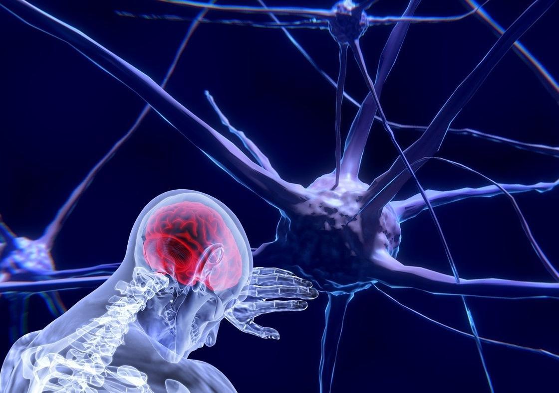 Объяснено воздействие коронавируса на мозг