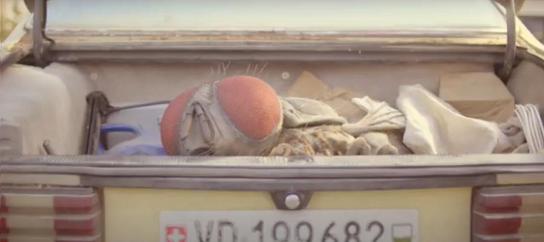 Гигантская муха в багажнике машины. Кадр из фильма «Жвалы»