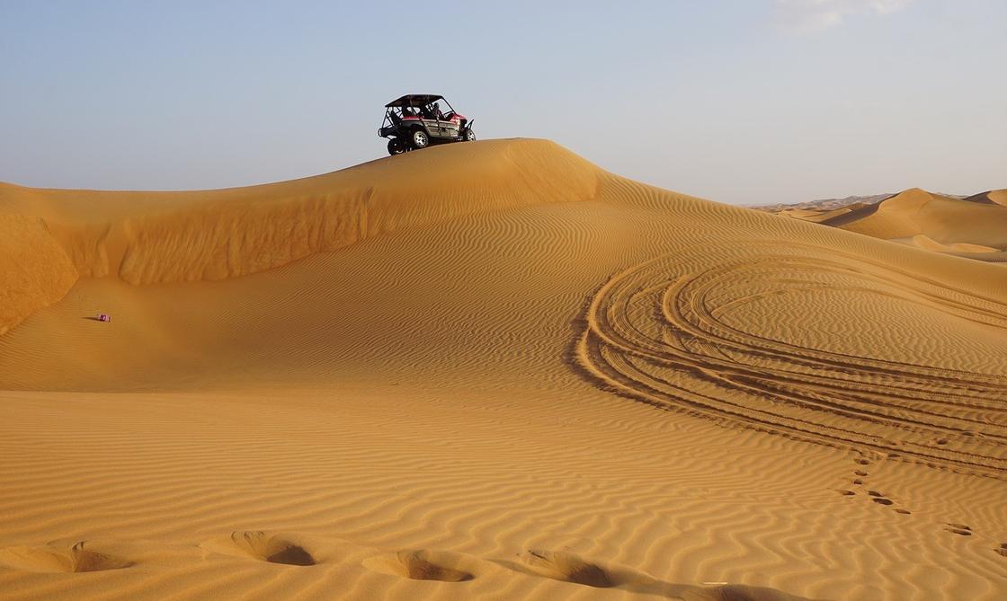 Чем заняться в Дубае в январе: лучшие варианты от экспертов