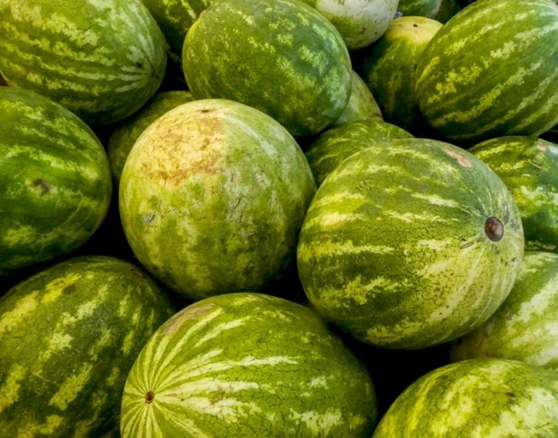 Фото: publicdomainpictures.net