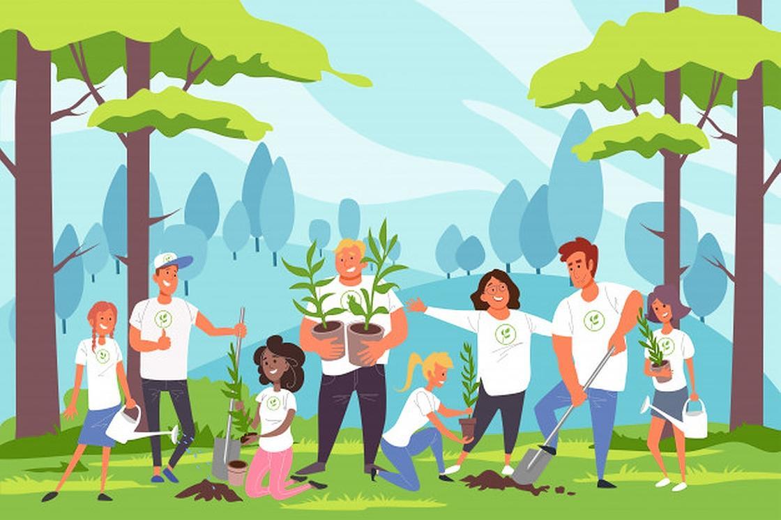 Люди на природе высаживают деревья