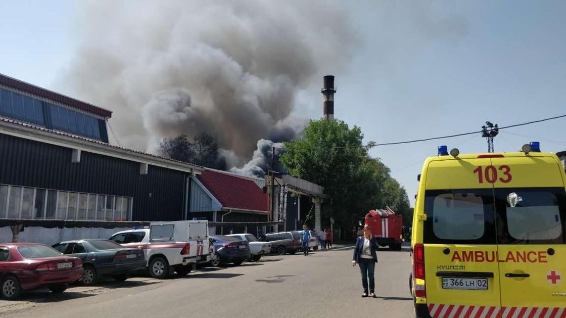 Крупный пожар произошел в Алматы (фото, видео)