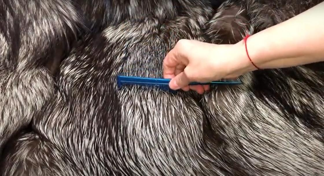 Расчесывание меха чернобурки