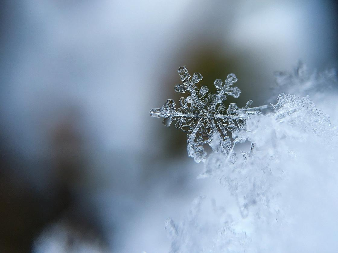 Какой сегодня праздник: календарь праздников на 1 декабря