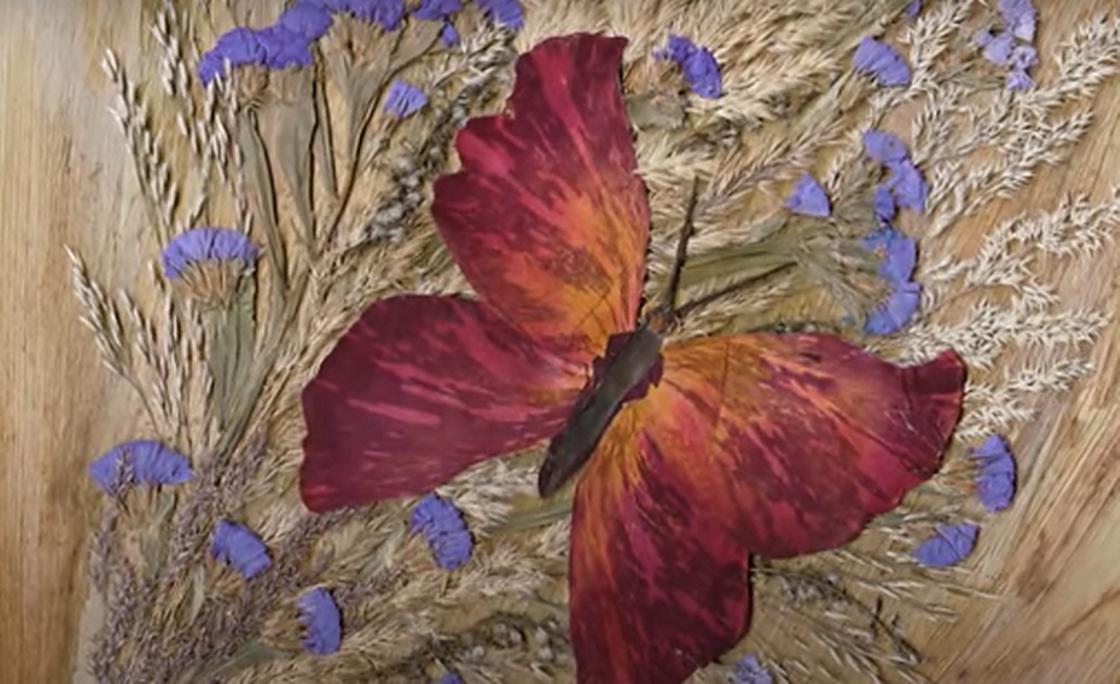 Бабочка из лепестков розы