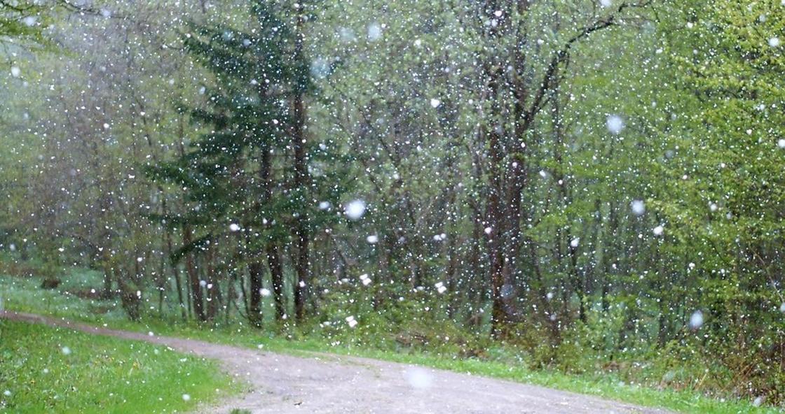 Град и сильный ветер: штормовое предупреждение объявлено в двух областях Казахстана