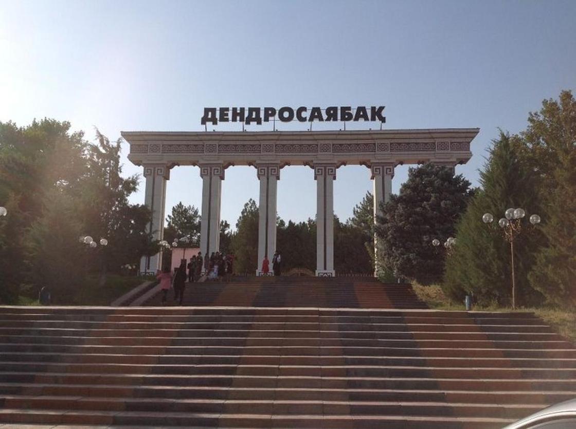 Куда сходить в Шымкенте: дендропарк