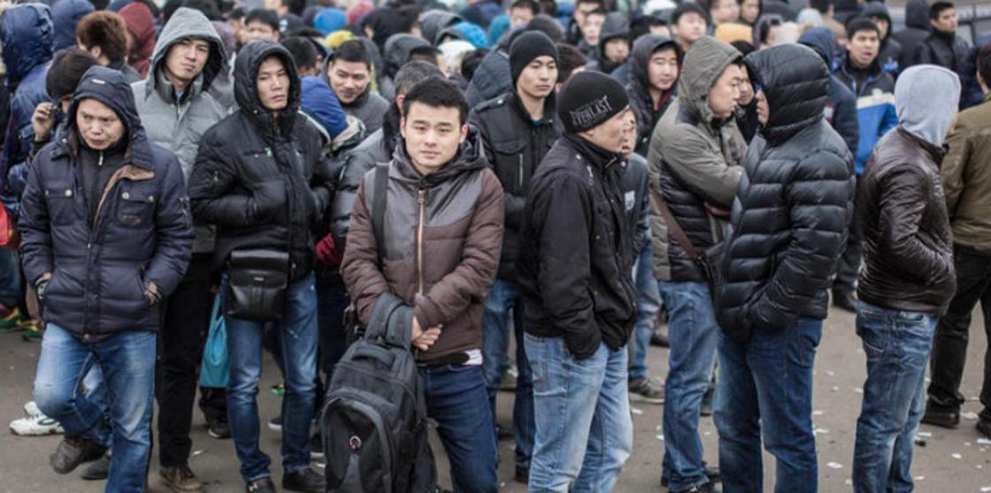 Незаконный канал миграции из КНР и Узбекистана ликвидировали в Казахстане