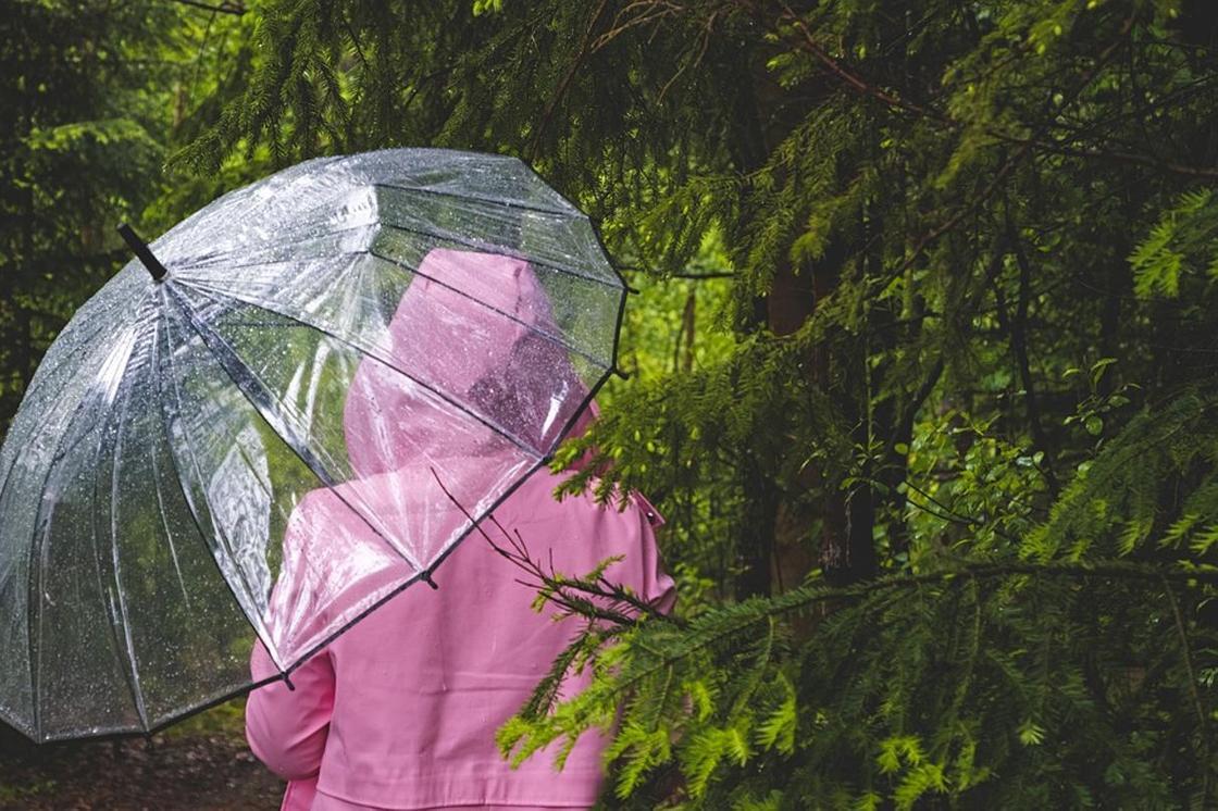 Погода в Алматы на 13 июня