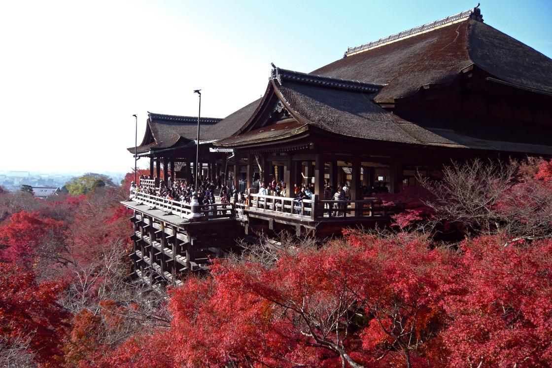 замок и сакура