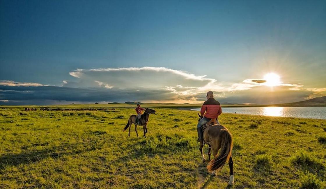 Новый челлендж в Казахстане: судьи пересели на коней (видео)