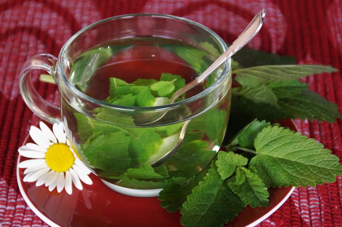 Чай с мятой и ромашкой