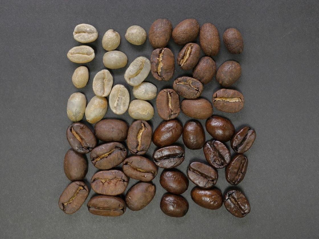 Кофейные зерна сырые и разной степени обжарки