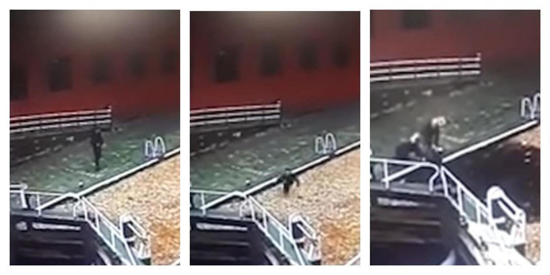 Невнимательный мужчина со смартфоном принял канал за тропинку и упал в воду (видео)