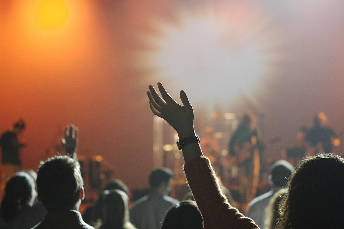 Концерт, фанаты