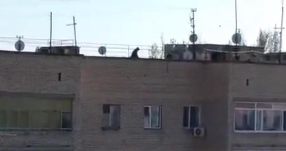 Мужчина с коляской гулял на крыше многоэтажки в Уральске