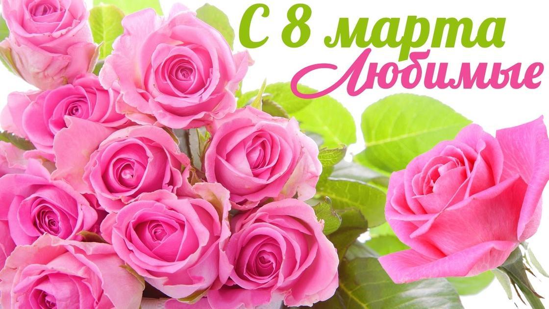 Розы и поздравление с 8 Марта