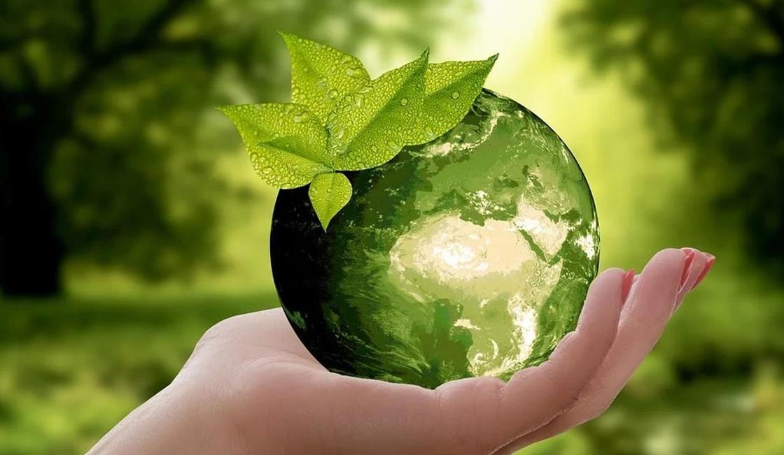 IGTIC: Готовится национальный доклад по переходу к «зеленой экономике»