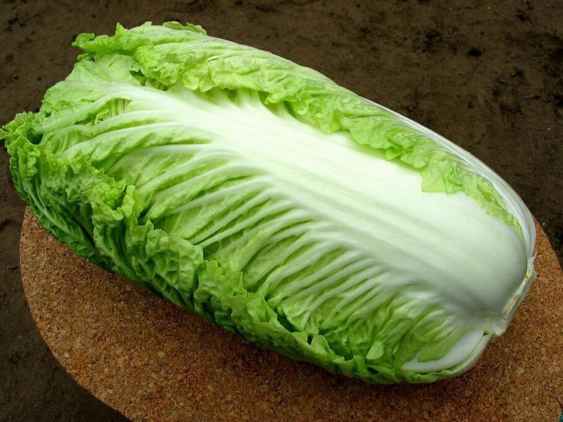 Пекинская капуста: салат без майонеза