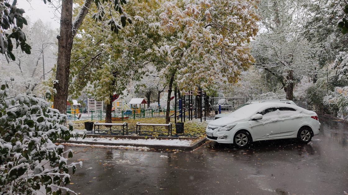 Первый снег в Алматы