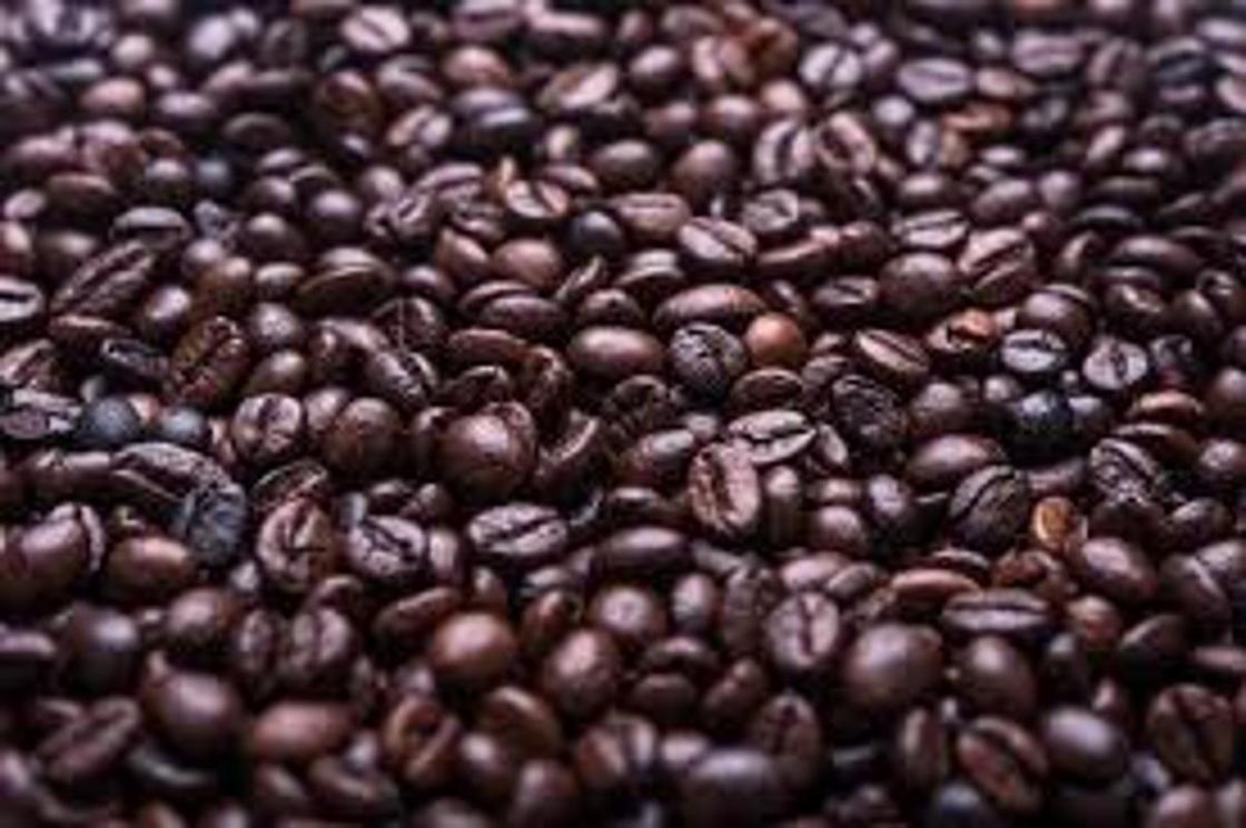 Кофейные зерна для топиария