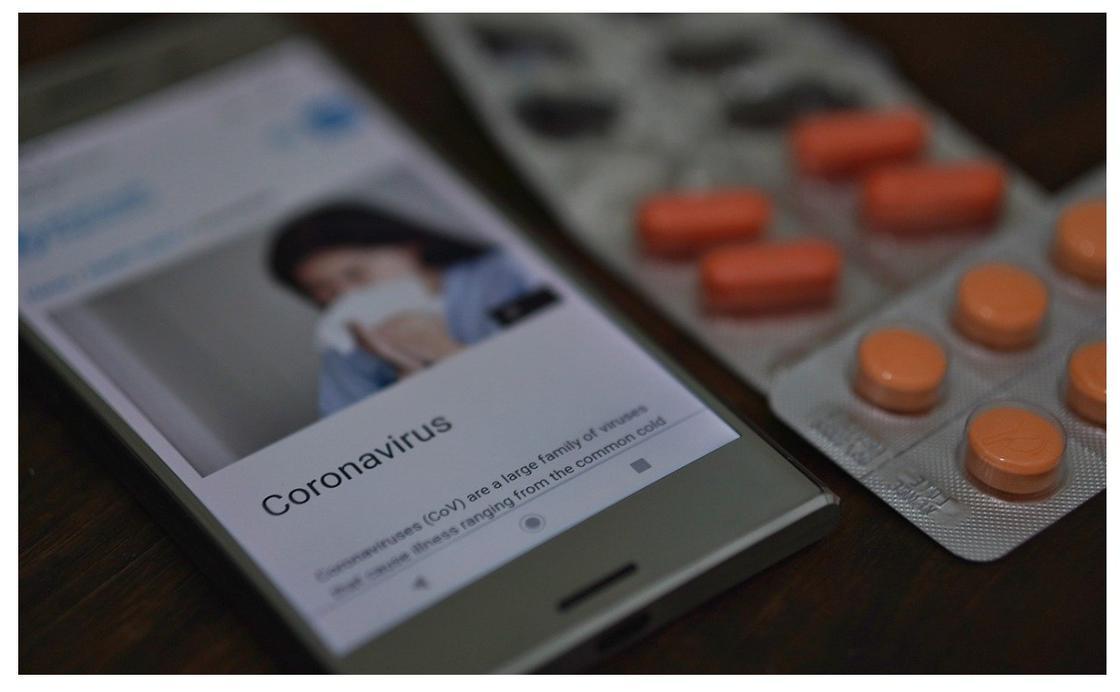 Стало известно о вспышке близкого к коронавирусу вируса в Китае в 2012 году
