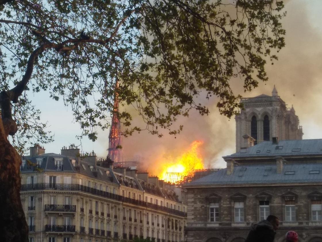 Собор Парижской Богоматери: история, описание, фото, трагедия культового сооружения