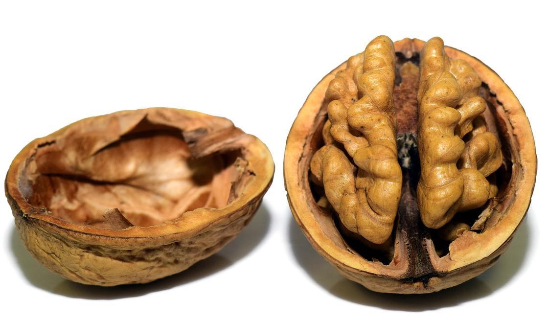 Половинка ореха