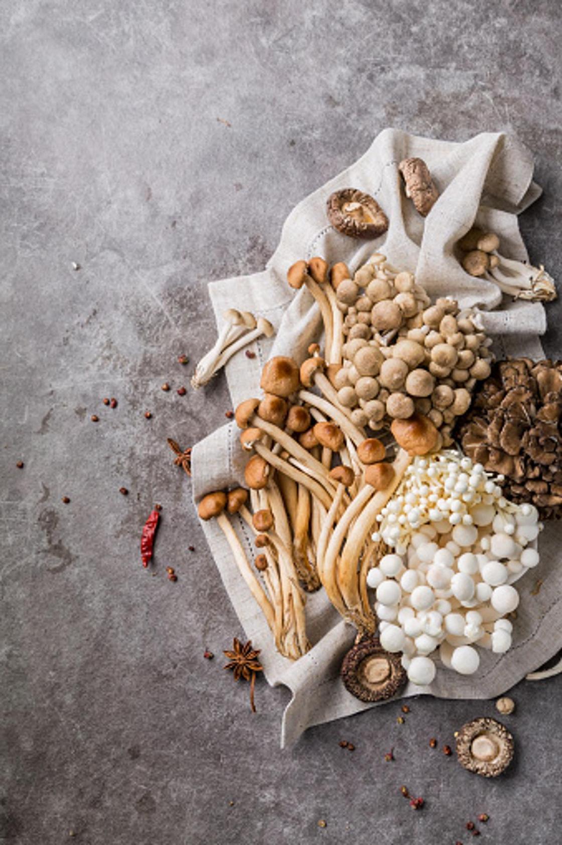 Блюда из грибов: пошаговые рецепты