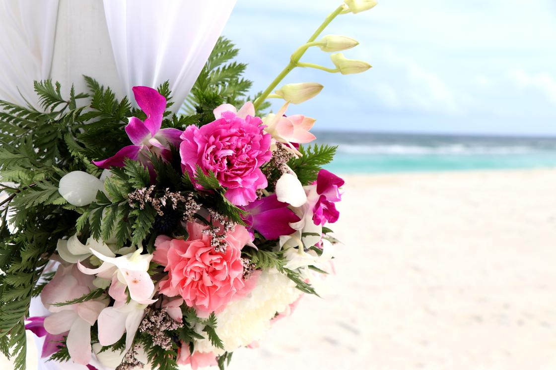 Цветы на пляже