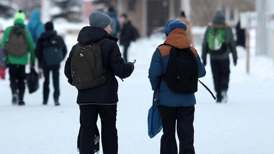 Занятия для школьников отменили в Астане