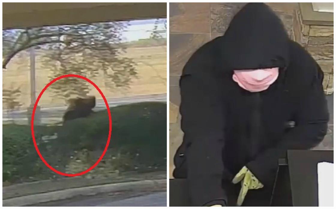 Неуклюжий грабитель попал на видео и сделал его вирусным в Сети