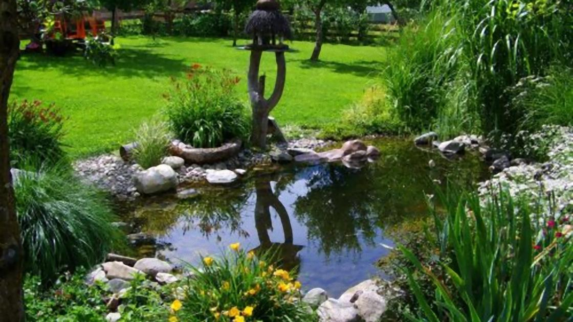 Маленький пруд с камнями и цветами на берегу