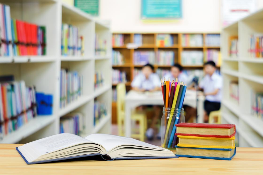 Сколько зарабатывают учителя частных и государственных школ
