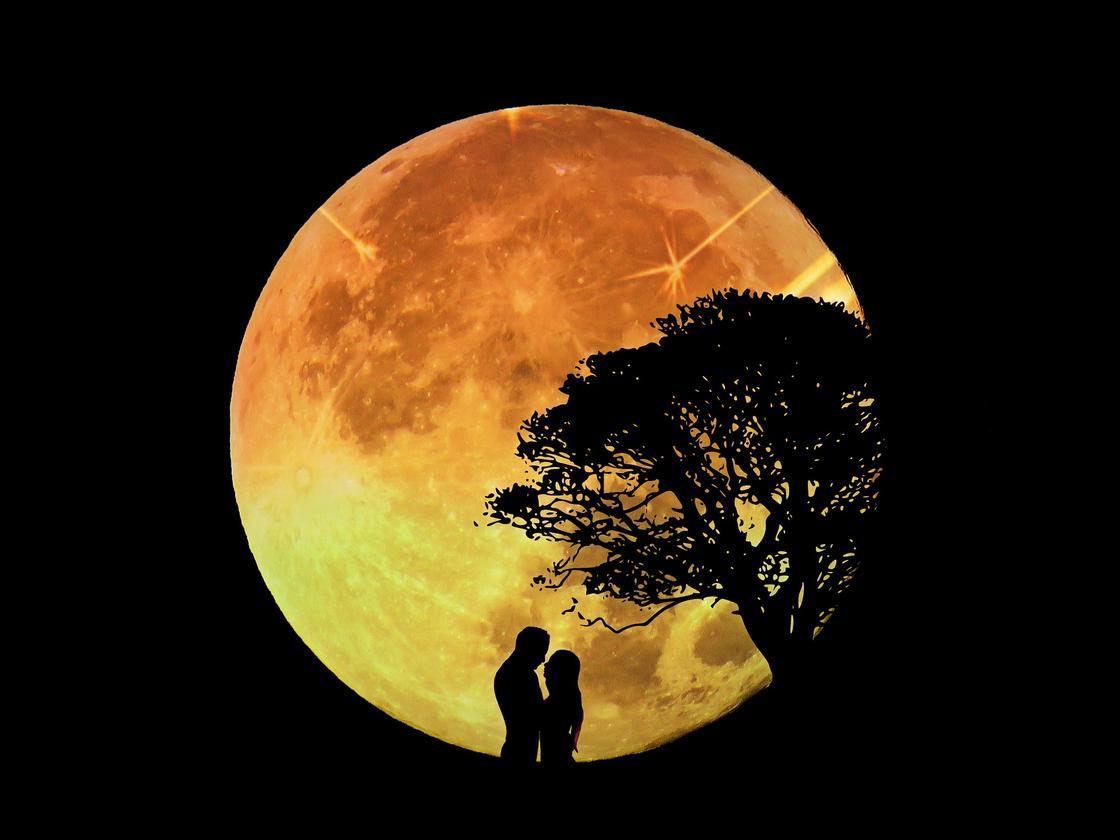 Пара на фоне полной Луны