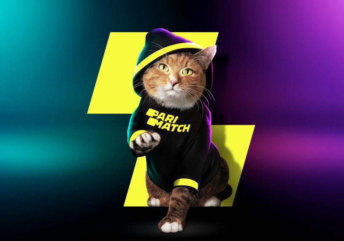 Устрой БойКот: Parimatch подписал кота