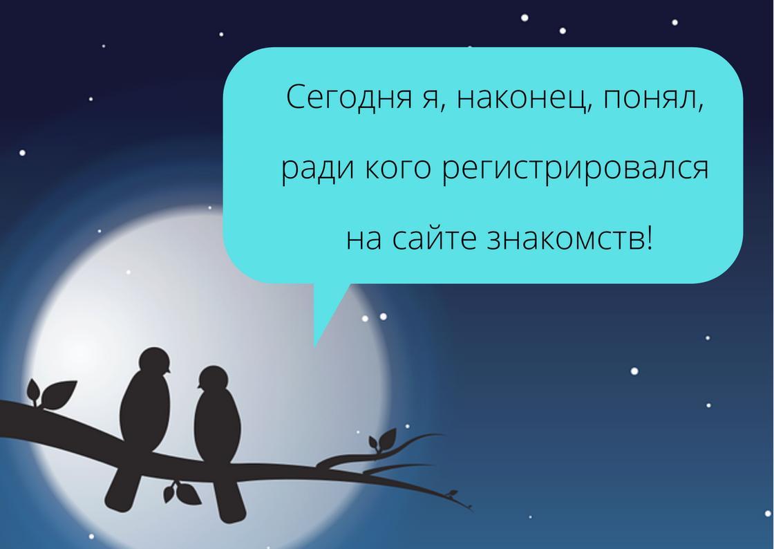 На фоне  ночного неба, Луны и птичек текст СМС девушке