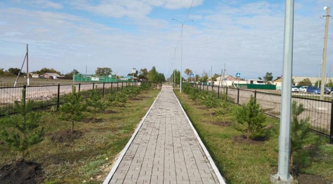 АПК и жилищные вопросы: о развитии Жаксынского района рассказали в Акмолинской области