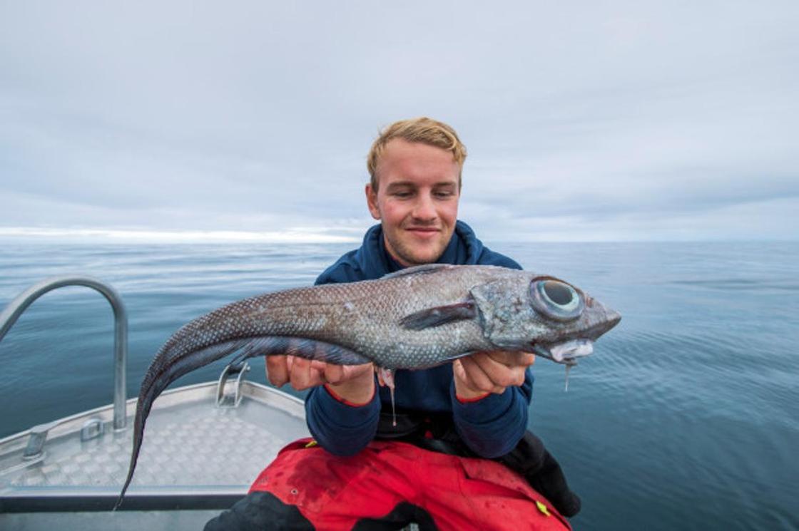 Морского монстра с глазами на полтуловища выловил рыбак из Норвегии (фото)