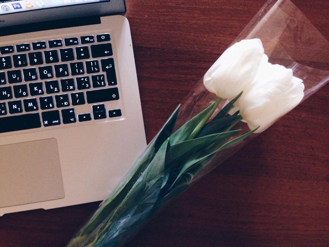 Цветы на рабочем столе