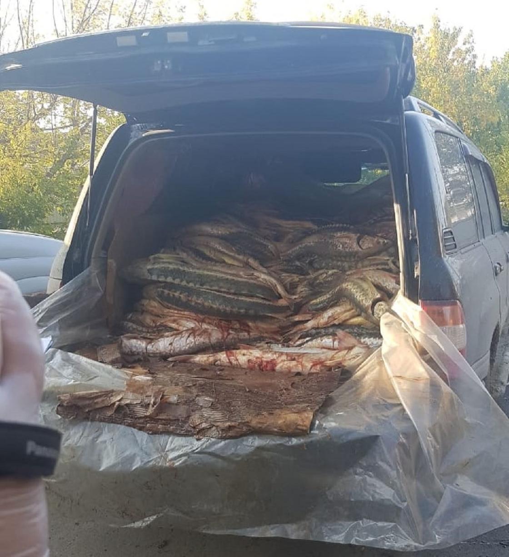 Внедорожник с рыбой остановили в Атырау