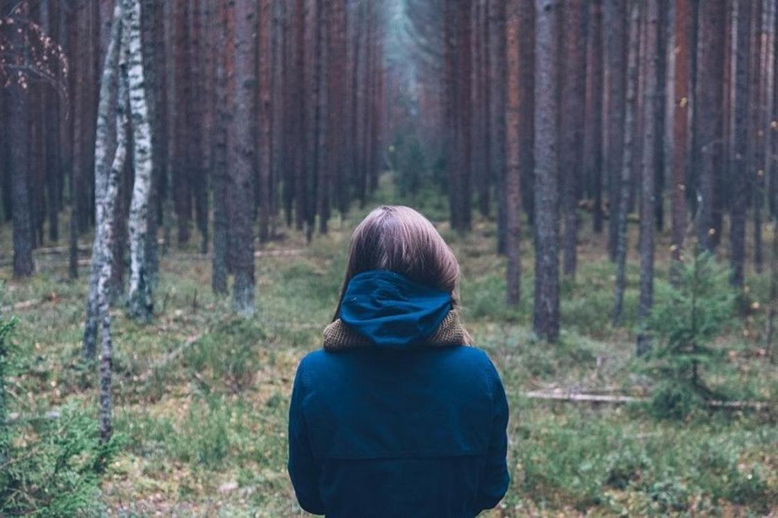 Көрнекі фото:sochi.scapp.ru