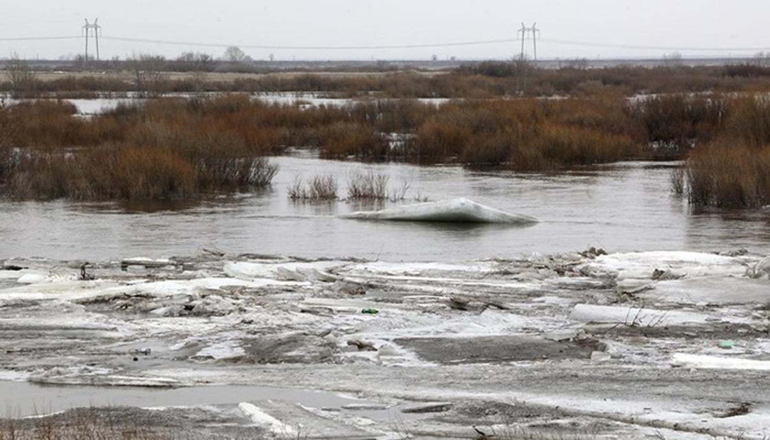 Кошанов о паводках: Не стоит недооценивать обстановку