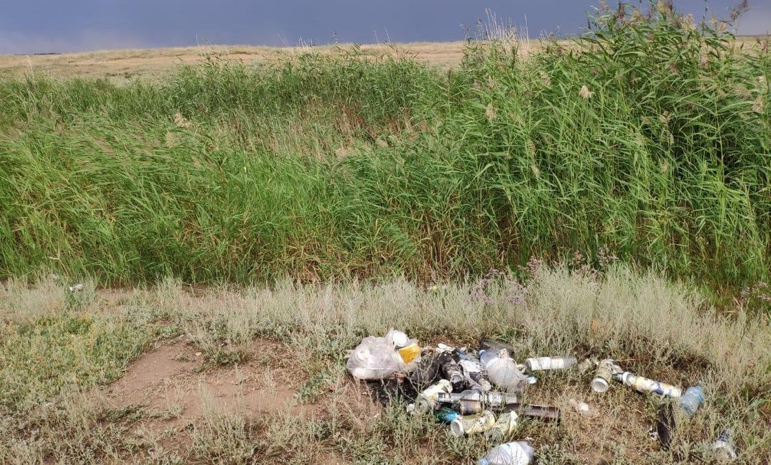 В Нур-султане пройдет очередная городская экологическая акция #Birge #TazaQazaqstan