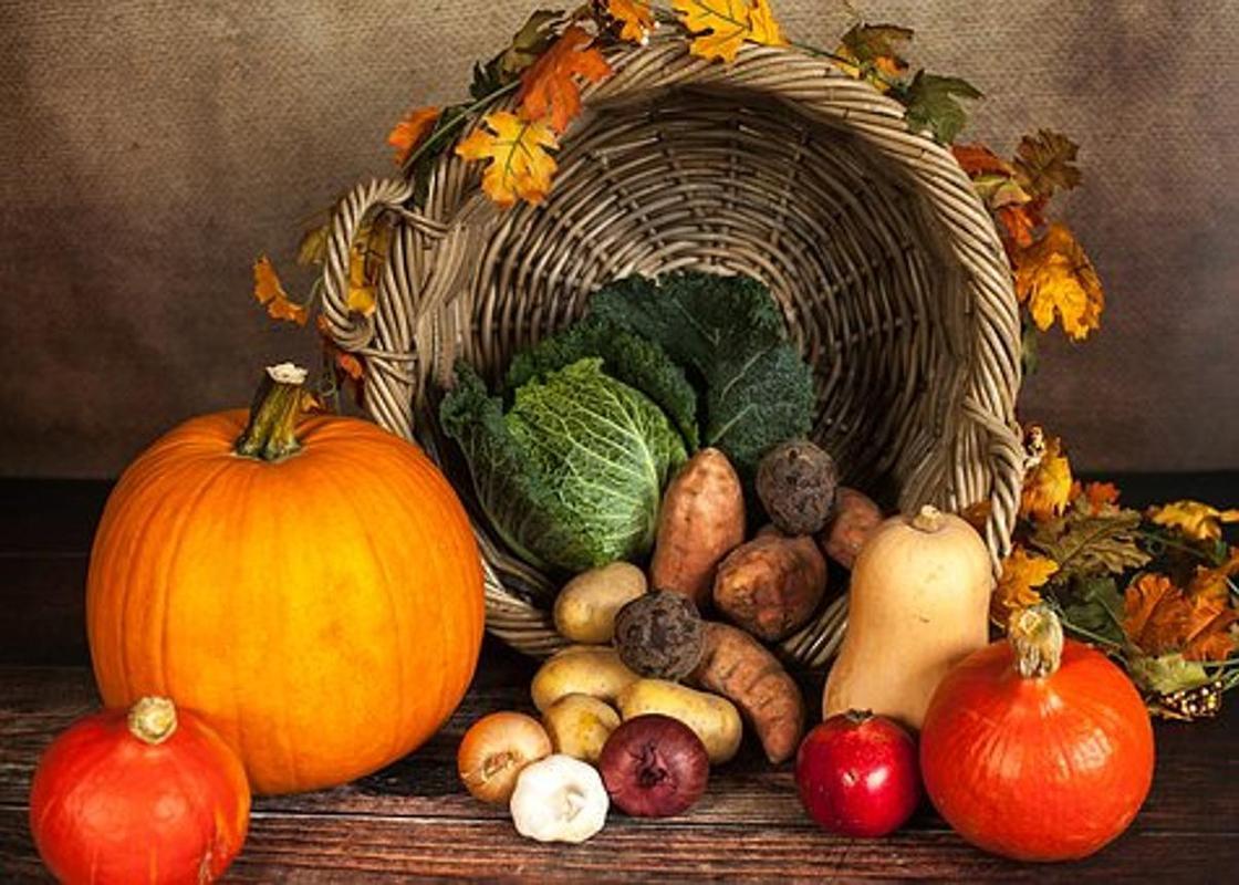 Осень: 10 причин полюбить эту волшебную пору года