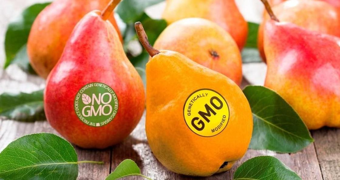 Корейскую продукцию с превышением ГМО обнаружили в Астане