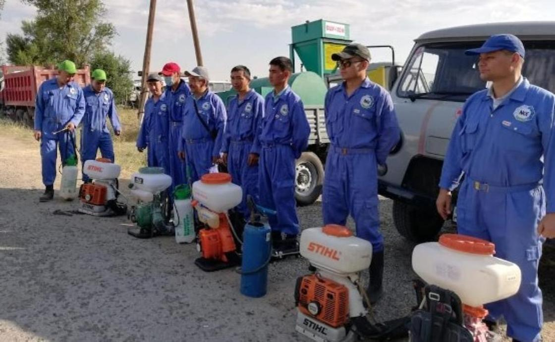 Фото: Түркістан облыстық аймақтық байланыс қызметі