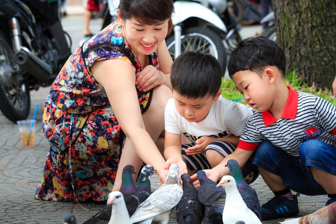 Мама с детьми кормят голубей