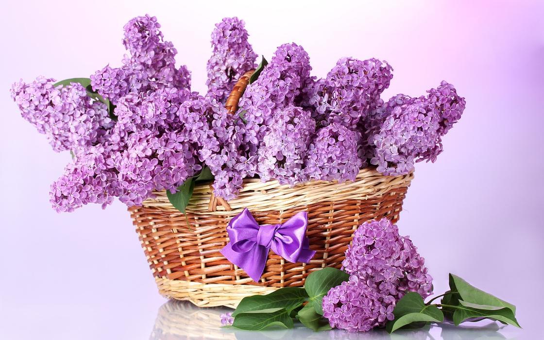 Букет лиловой сирени в плетеной корзине