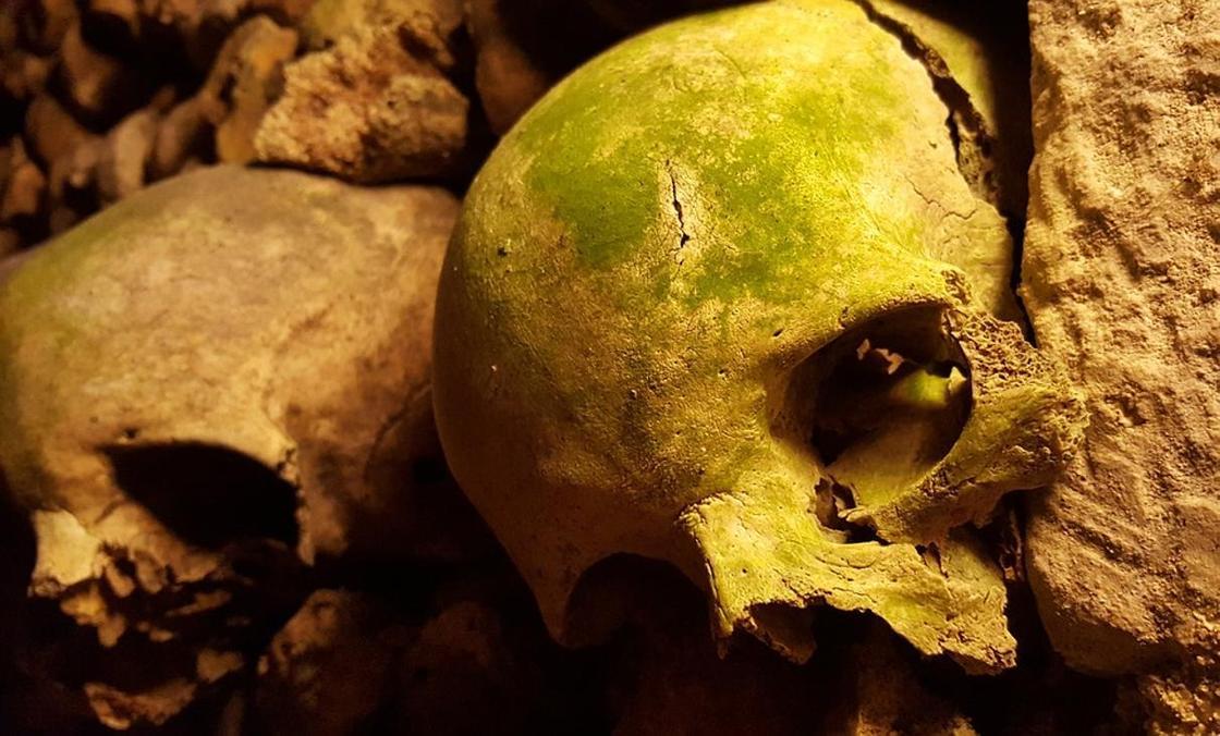 """Признаки """"жизни"""" у мертвых тел обнаружили ученые"""